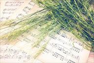 楽譜とススキ_R